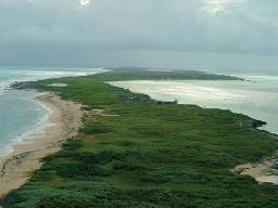 isla contoy 7