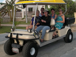 sm golf cart W people