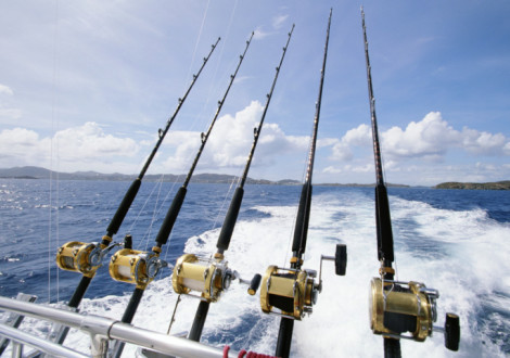 Deep sea fishing the top boat charters for Deep sea fishing trips