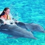 Garrafon & Dolphin